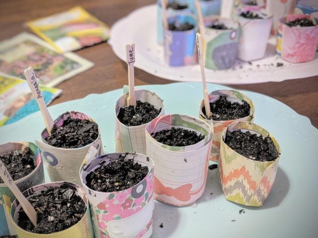 pretty seed starter pots DIY